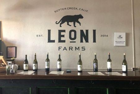 Tasting Bar at Leoni Farms Wine in Sutter Creek, CA